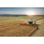 Сельское и лесное хозяйство